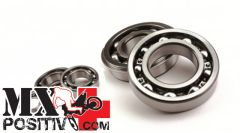 CRANKSHAFT MAIN BEARING KOYO CU6204 TN9 C3 Minarelli scooter